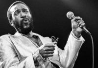 What's Going On? Documentário Sobre Marvin Gaye