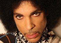 8 Momentos em Homenagem ao Prince