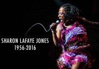 Morre Sharon Jones aos 60 anos
