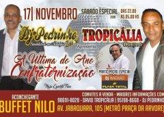 Dia 17 de Novembro Tem Tropicália Dançante Com A Última Festa Do Ano